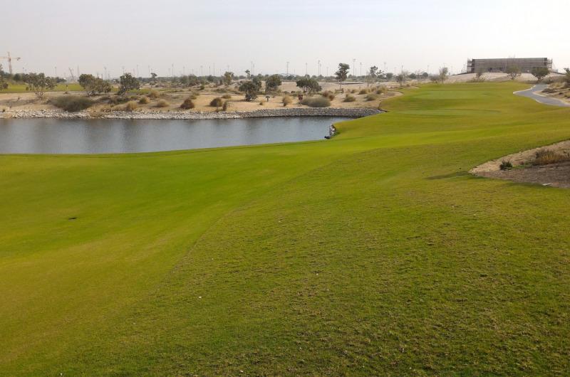 Education City Golf Course